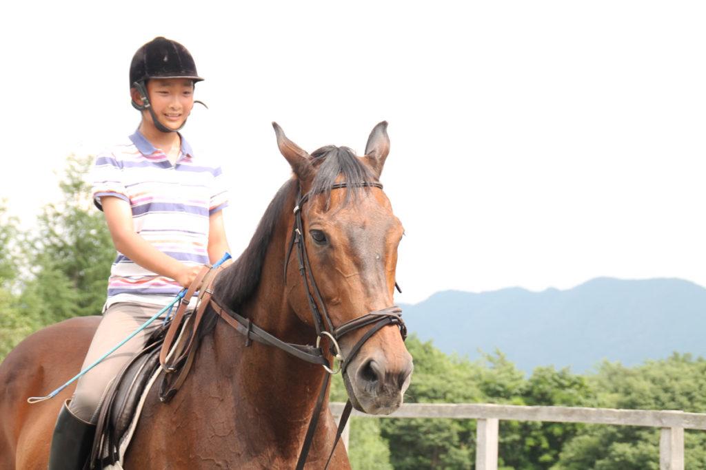 谷口牧場養老牧場で馬に乗る少女の写真
