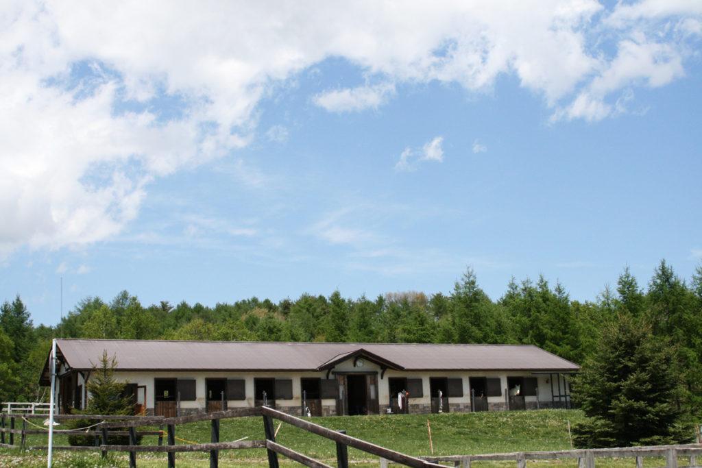 谷口牧場養老牧場厩舎全体の写真