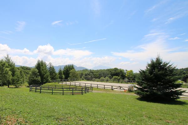 谷口牧場養老牧場の馬場の写真