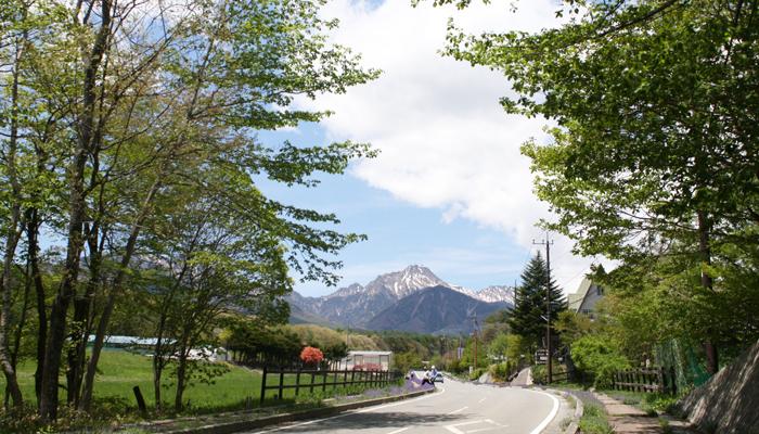 谷口牧場までの道の写真