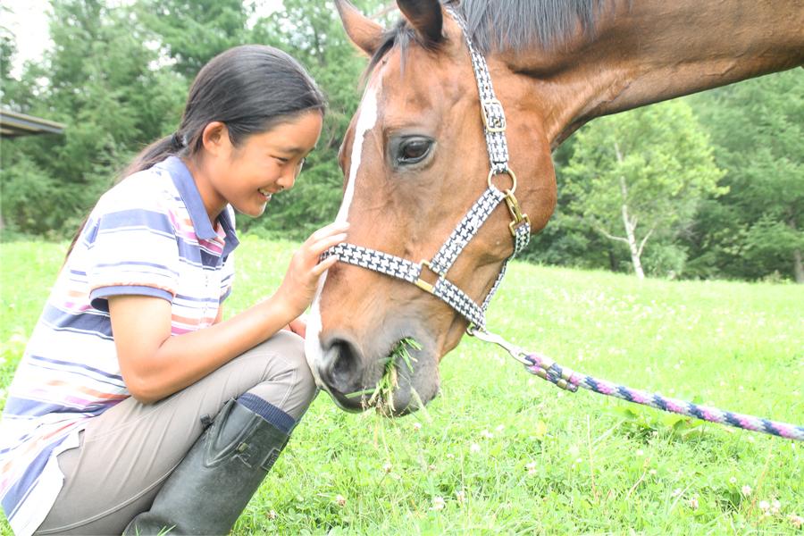 谷口牧場養老牧場で馬をなでる少女の写真