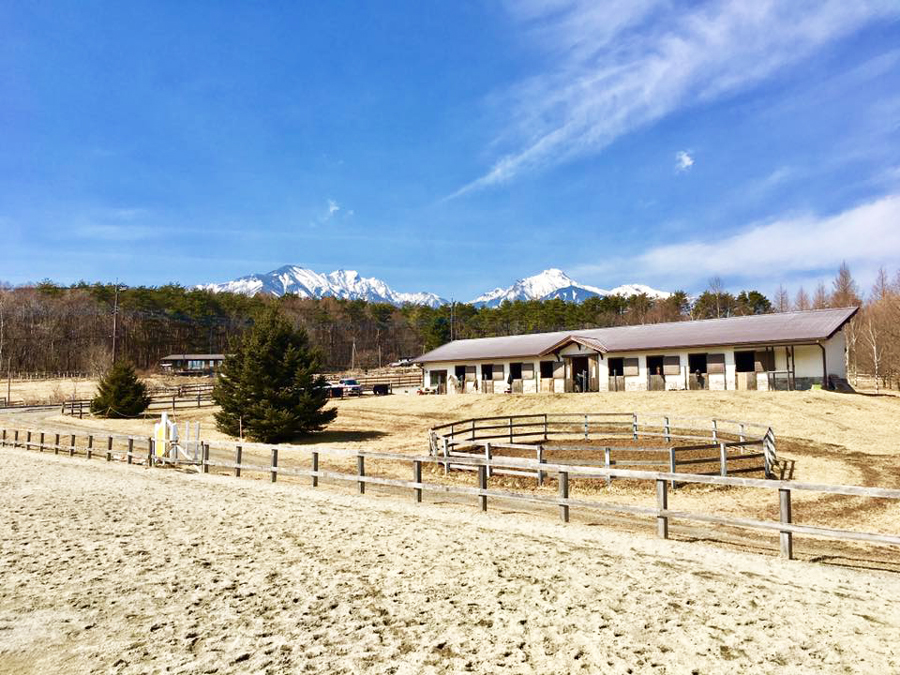 谷口牧場の厩舎の写真